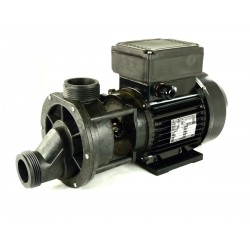 Chinese replacement 2hp 2speed pump