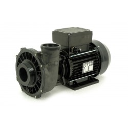 Waterway Two speed 2hp VIPER pump