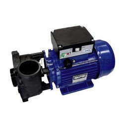 "Futura pump 2hp 2"" suction"