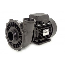 "2hp 48F Executive 2-1/2"" wet end"