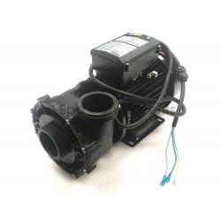 Hotspring Watkins 1 speed pump