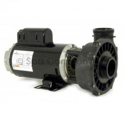 Emerson spa pump 2hp 2speed